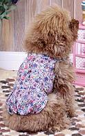 Платье для собак  Добаз , Dobaz  Милан сирень