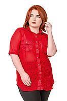 Рубашка женская размер плюс Шифон красный в горошек 52-56