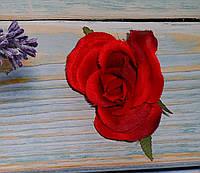 Головка розы красная