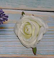 Головка розы белая