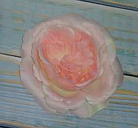 Головка розы Д.Остина(английская) нежно розовая, фото 1