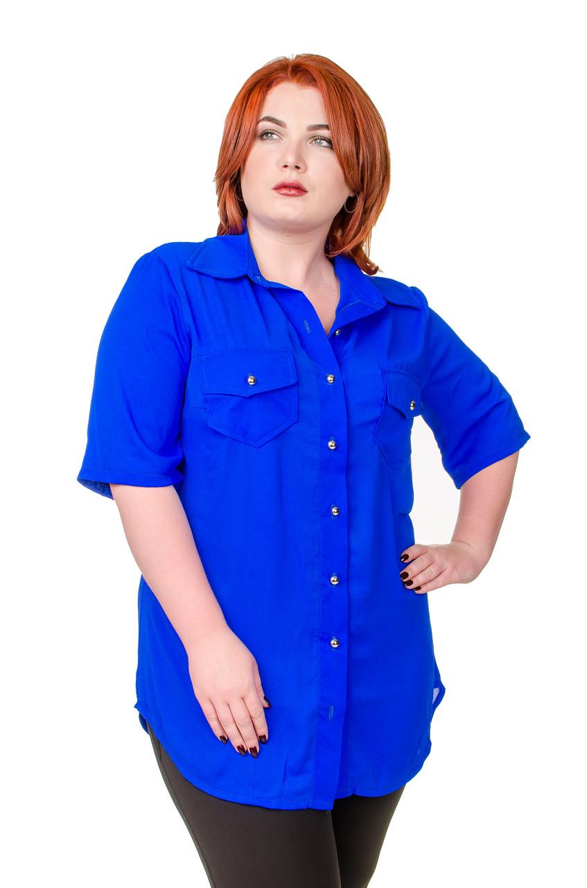 Рубашка женская размер плюс Классика электрик 52-56