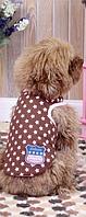 Майка для собак Добаз, Dobaz Stars шоколад