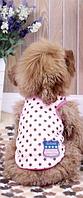 Майка для собак Добаз, Dobaz Stars розовый