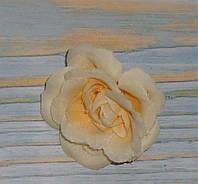 Головка мини розы персикового цвета