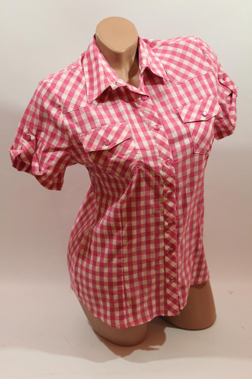 9681e13d9cf Женская рубашка на кнопке в клетку с коротким рукавом Cat.