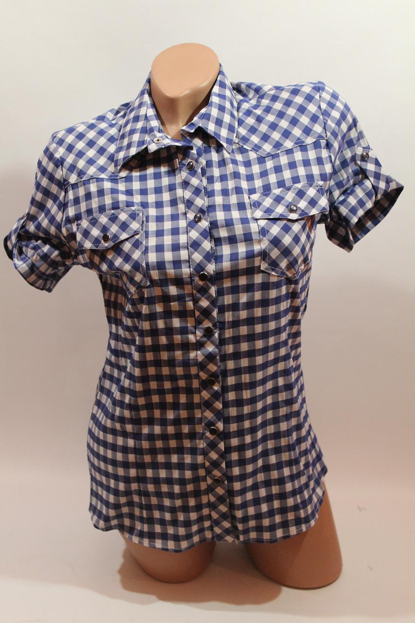 6d6b9c22d9d Купить Женскую рубашку на кнопке в клетку с коротким рукавом Cat ...