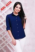 Классическая женская  блузка. Большие размеры. Цвета