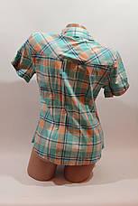 Женская рубашка в клетку с коротким рукавом Cat., ML, фото 3
