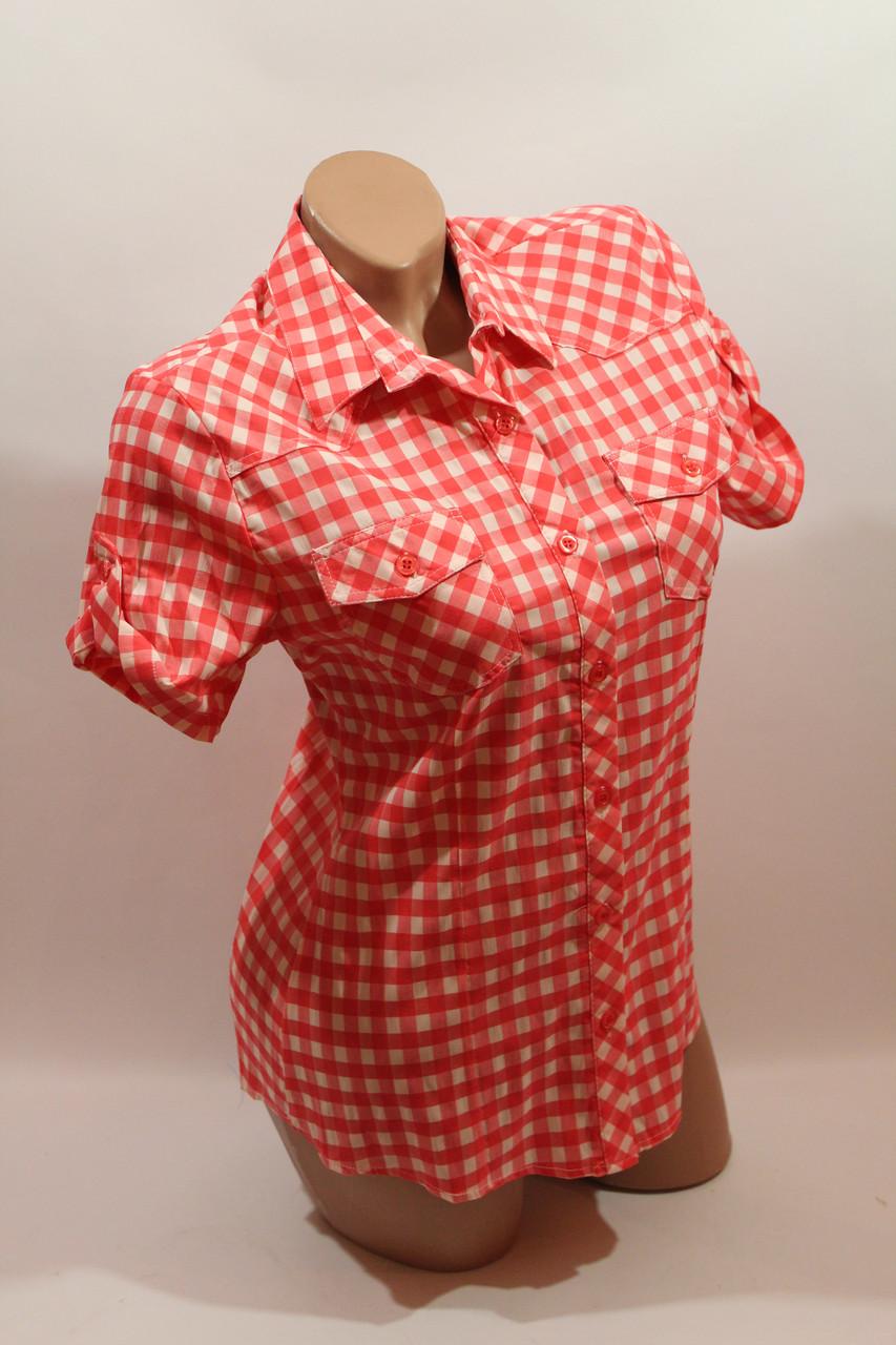 Женская рубашка в клетку с коротким рукавом Cat., ML
