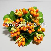 Тычинки комбинированные, оранжево-желтые, с круглыми листочками