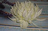 Головка хризантемы белой большой