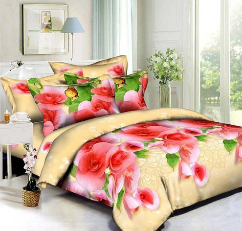 Комплект постельного белья евро 200*220 хлопок  (5478) TM KRISPOL Украина, фото 2