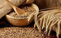 Пшеница (органическая)