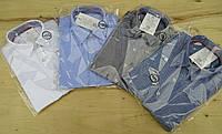 Рубашка классическая с коротким рукавом. Размеры: 98,104,110,116,122