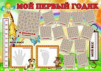 Карта первого года ребенка ProfiPlan Мой 1 год в тубусе А2 русский Плакат детский
