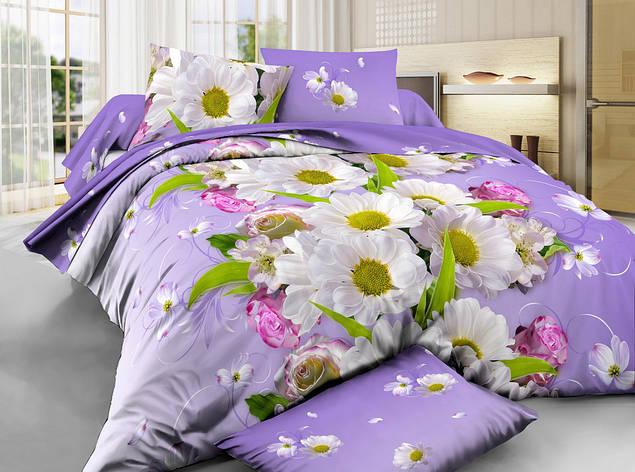 Постельное бельё двухспальное 180*220 хлопок (6364) TM KRISPOL Украина, фото 2