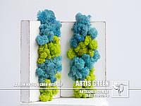 """Композиция «Artis Panel Mini» из стабилизированного мха от компании  """"Artis Green"""""""