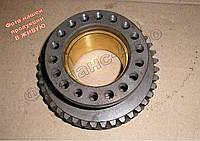 Шестерня привода топливного насоса Т-40 (Д-144)