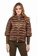Женская куртка КВ-3 Шоколад