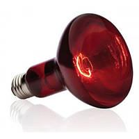 Лампа инфракрасная Lemanso 250W E27 230V / LM225  полностью красная