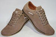 Кроссовки мужские Adidas(бежевые)