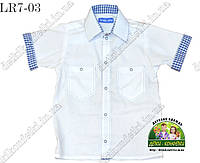 Рубашка для мальчика с коротким рукавом, белая комбинированная синей клеткой