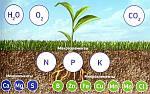 Микроудобрение в современных агротехнологиях