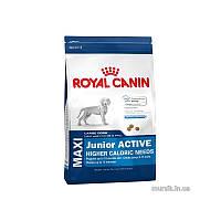 Сухой корм 15 кг для щенков крупных пород с активным образом жизни Роял Канин / MAXI JUNIOR ACTIVE Royal Canin