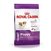 Сухой корм 4 кг для щенков гигантских пород Роял Канин / GIANT PUPPY Royal Canin