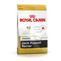 Сухой корм 3 кг для щенков породы Джек Рассел Терьер Роял Канин / JACK RUSSEL JUNIOR Royal Canin