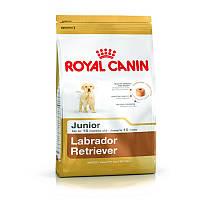 Сухой корм 3 кг для щенков породы Лабрадор Роял Канин / LABRADOR JUNIOR Royal Canin