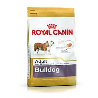 Сухой корм 3 кг для породы Английский бульдог Роял Канин / BULLDOG ADULT Royal Canin