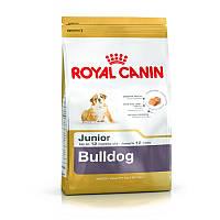 Сухой корм 12 кг для щенков породы Английский бульдог Роял Канин / BULLDOG JUNIOR Royal Canin