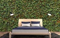 Фотообои флизелиновые Стена с плюща 366*254
