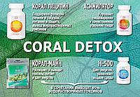 Корал Детокс, комплексная программа очищения организма