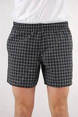 Мужские шорты Adidas Check Short Length, фото 3