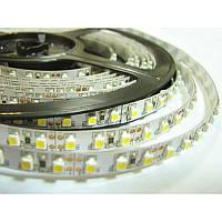 Светодиодная лента smd 3528 120 диод/м белый/теплый белый