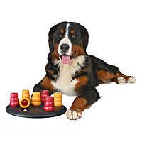 Развивающие игры для собак