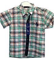 Рубашка детская на мальчика клетка (лето)