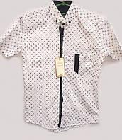 Белая рубашка на короткий рукав для мальчика 72084