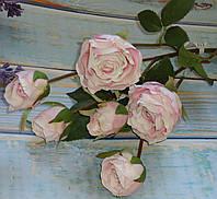 Ветка роз премиум класса нежно розовый