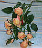 Ветка роз мелких премиум класса бежево-розовый