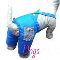 Штаны зимние синие для собак DogsBomba