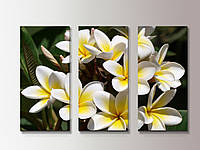 Интерьерная модульная картина. Цветы