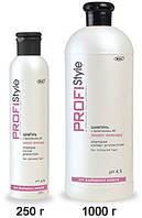 """Шампунь Profistyle """"Захист кольору для фарбованого волосся 250 мл"""