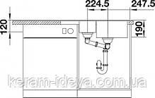 Кухонная мойка Blanco Legra 6S Compact 521305 жасмин, фото 3