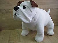 Мягкая игрушка собака бульдог ручная работа
