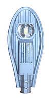 Светильник уличный ДКУ LED Efa М 50Вт 5000К ECO