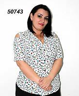 Блуза с рукавом до локтя 50,52,54,56